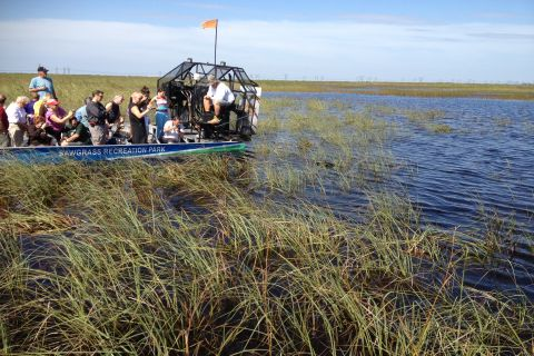 Enjoy the nature of the Everglades of Florida by airboat