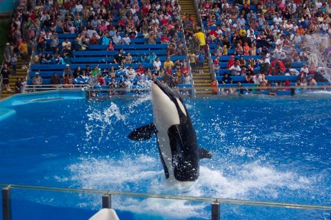 Sea World Adventure Park