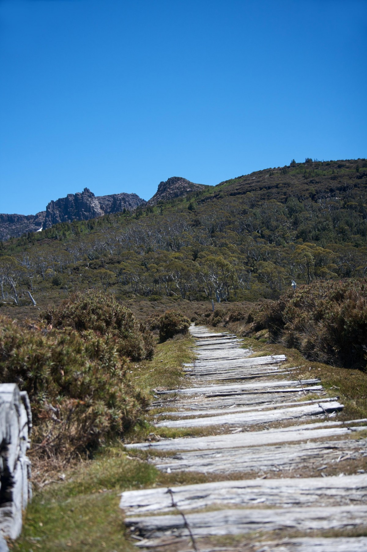 Queenstown Australia  city images : Overland Track Queenstown, Australia | TouristEye