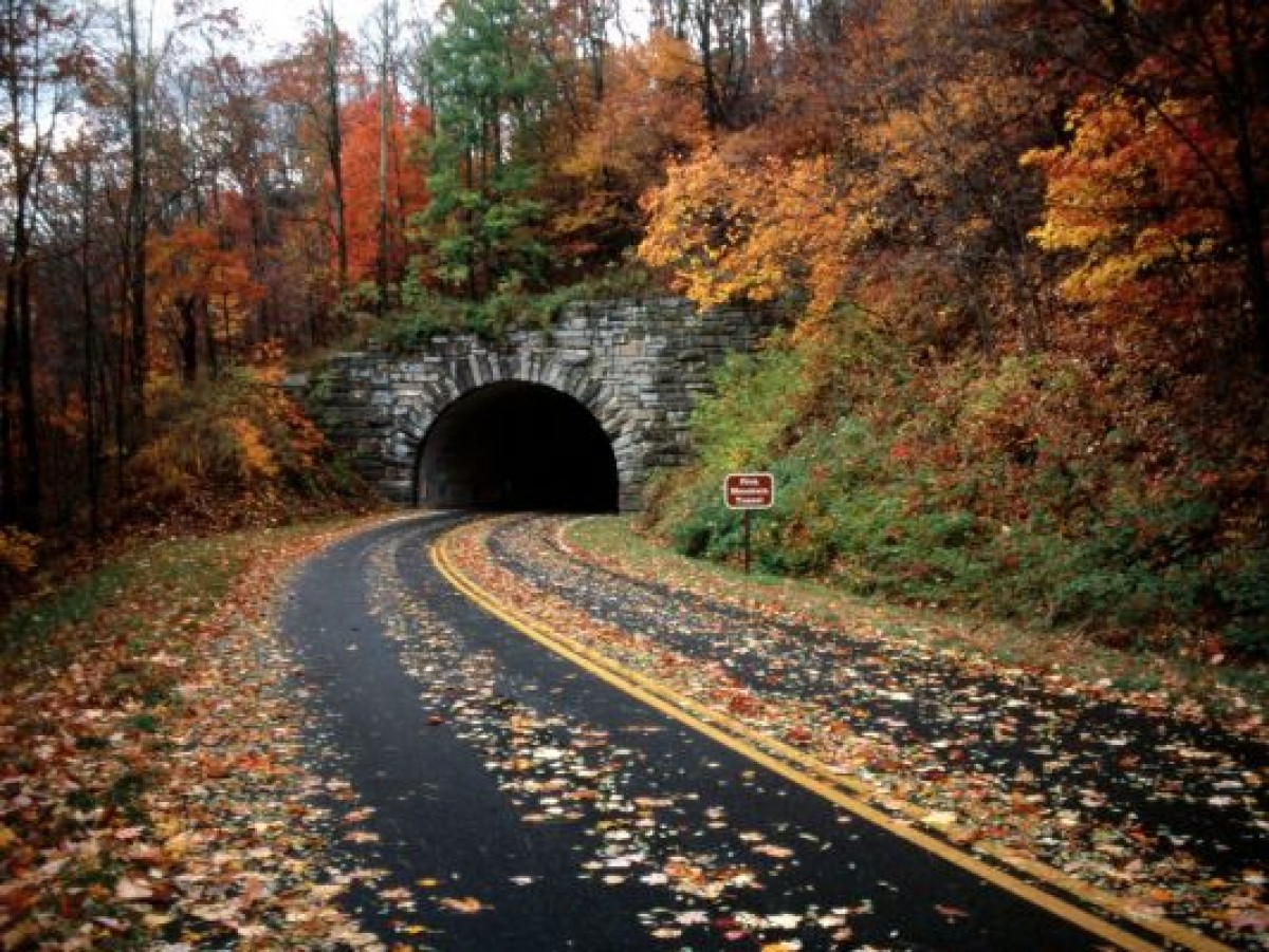 Asheville (NC) United States  City new picture : Asheville North Carolina, United States | TouristEye
